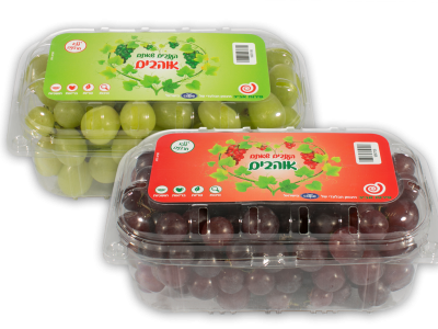 Cape-page_grape-box